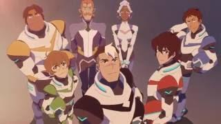 Which Voltron palidin are you?