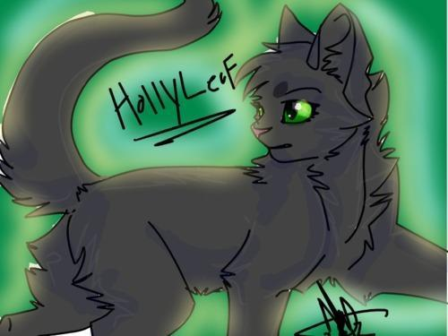 How much do you know about Hollyleaf?
