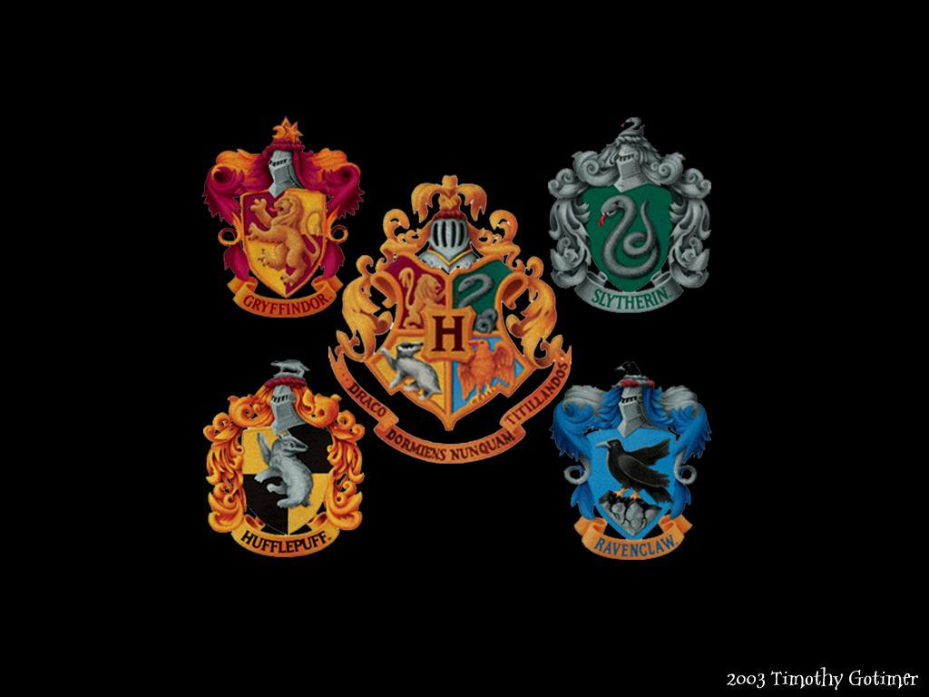 What Hogwarts House Are You In? (6)