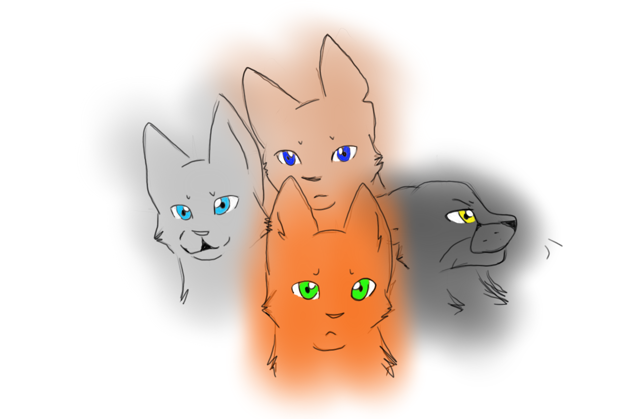 what warrior cat clan are you from?
