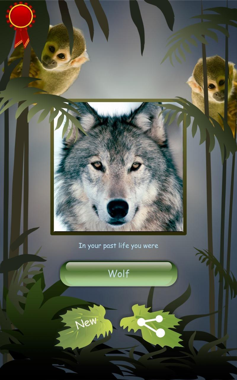 What Wolf Are You? (4)