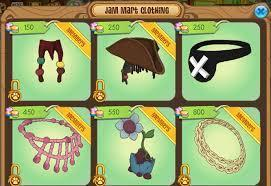 Which Animal Jam clothing item are you?