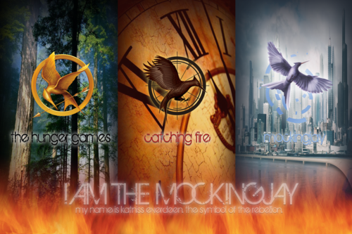 Do you belong in the Hunger Games Fandom?