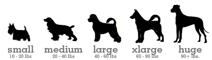 What dog size would best benefit you?