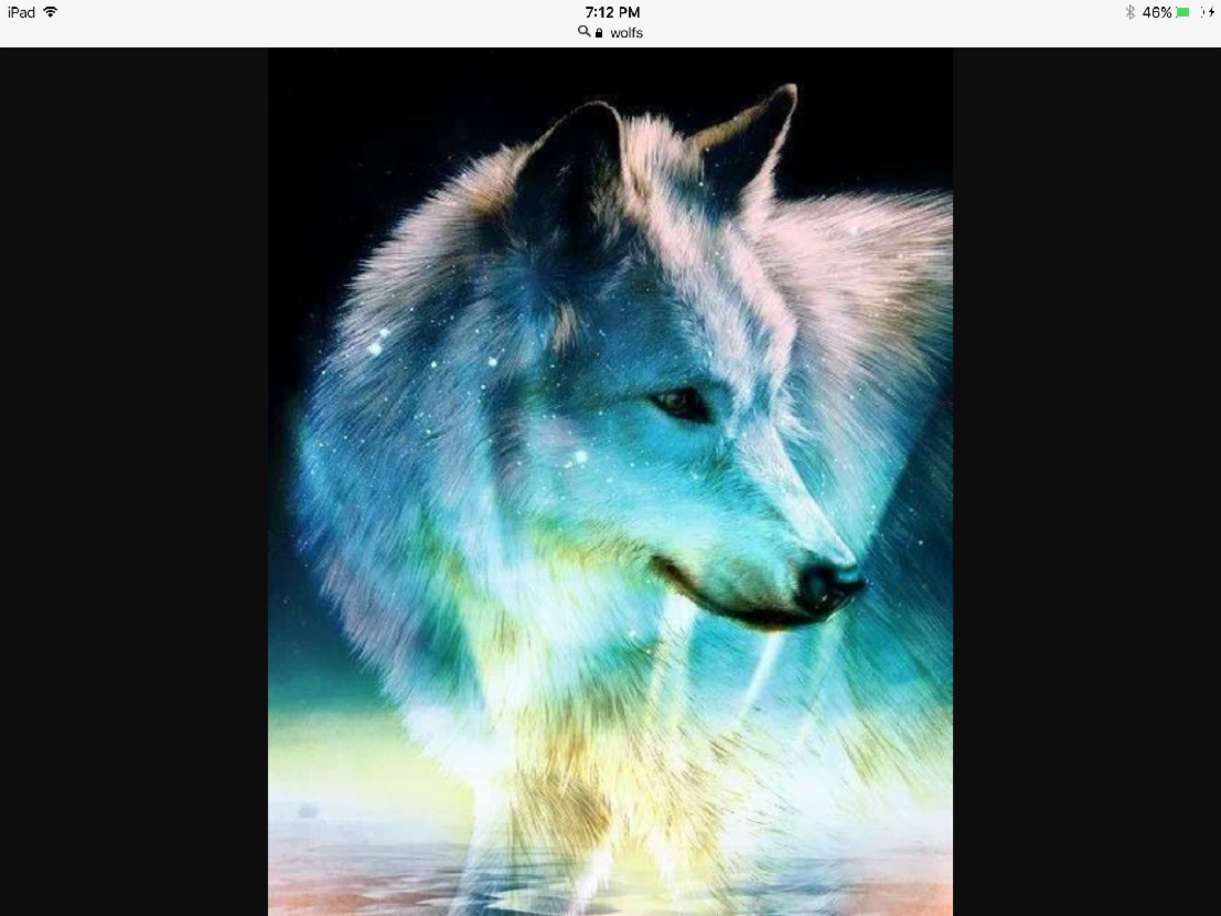 What rank in a wolf pack are u?