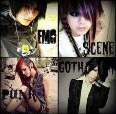 Are you emo, scene, goth or punk?