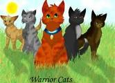 what warrior cat are you (1)