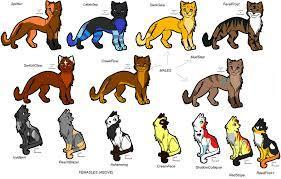VERY hard thunderclan families.