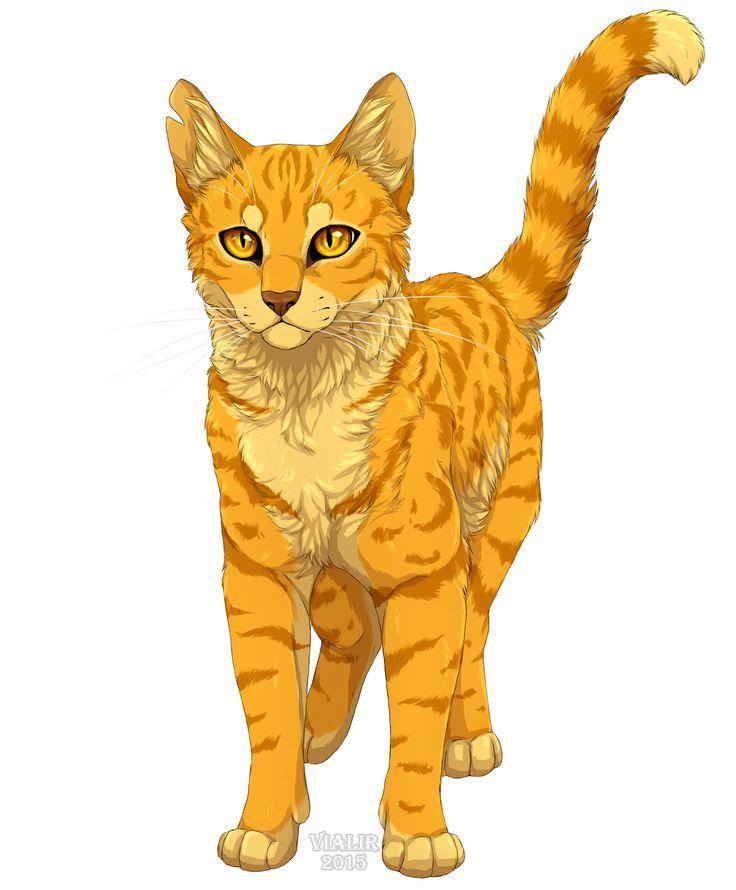how well do you know Firestar from warriors?