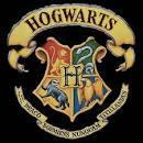 The Hogwarts Sorting Hat Quiz :)