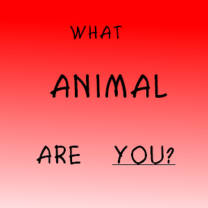 WHAT ANIMAL ARE YOU???