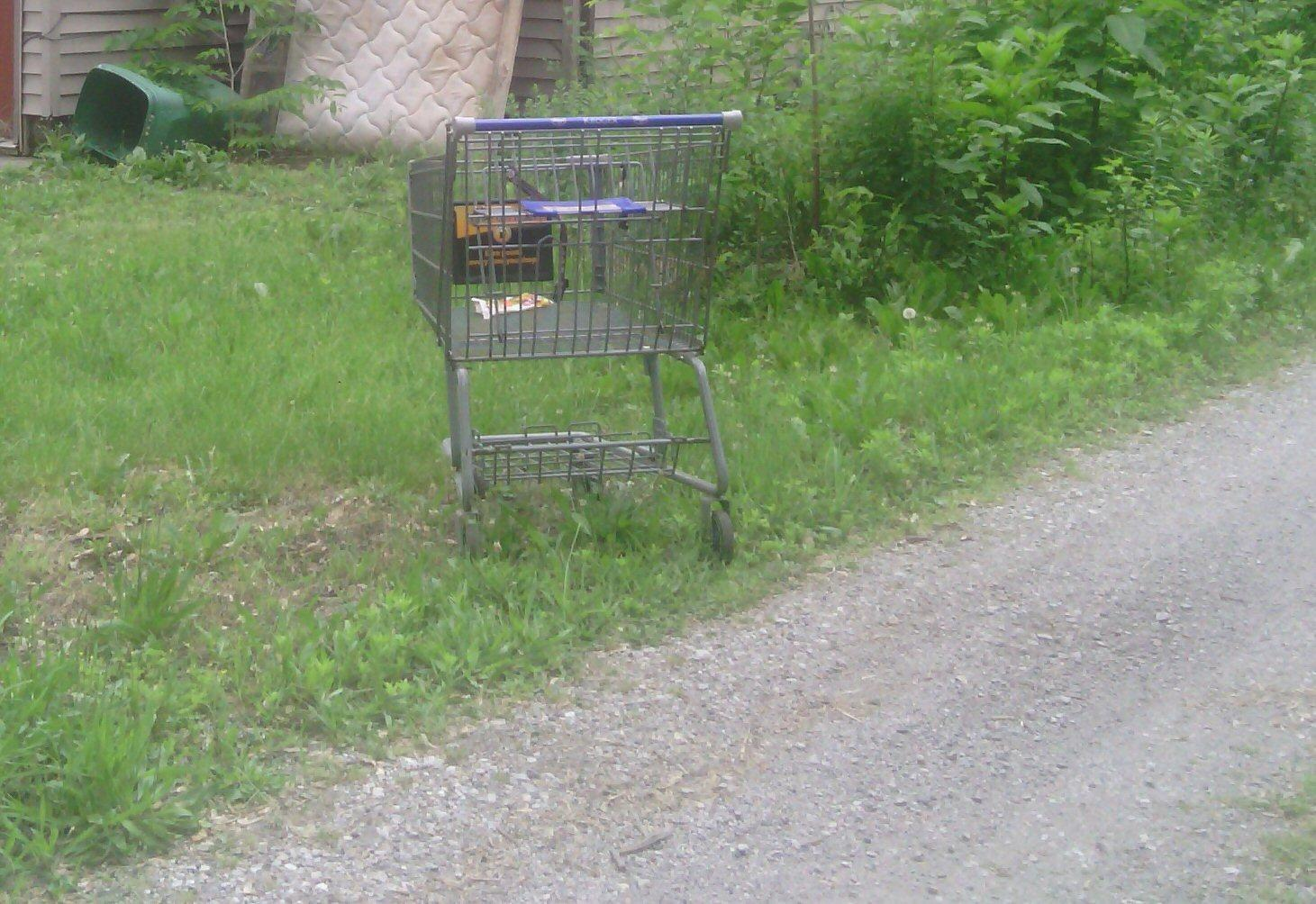 If you were a shopping cart, where would you get left?