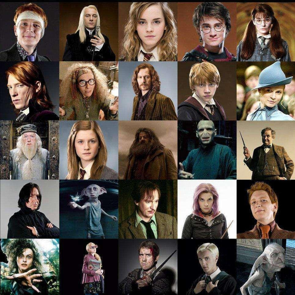 Which Harry Potter character are you? (12)