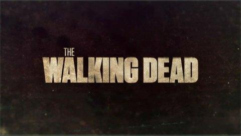 Walking Dead Quiz (1)