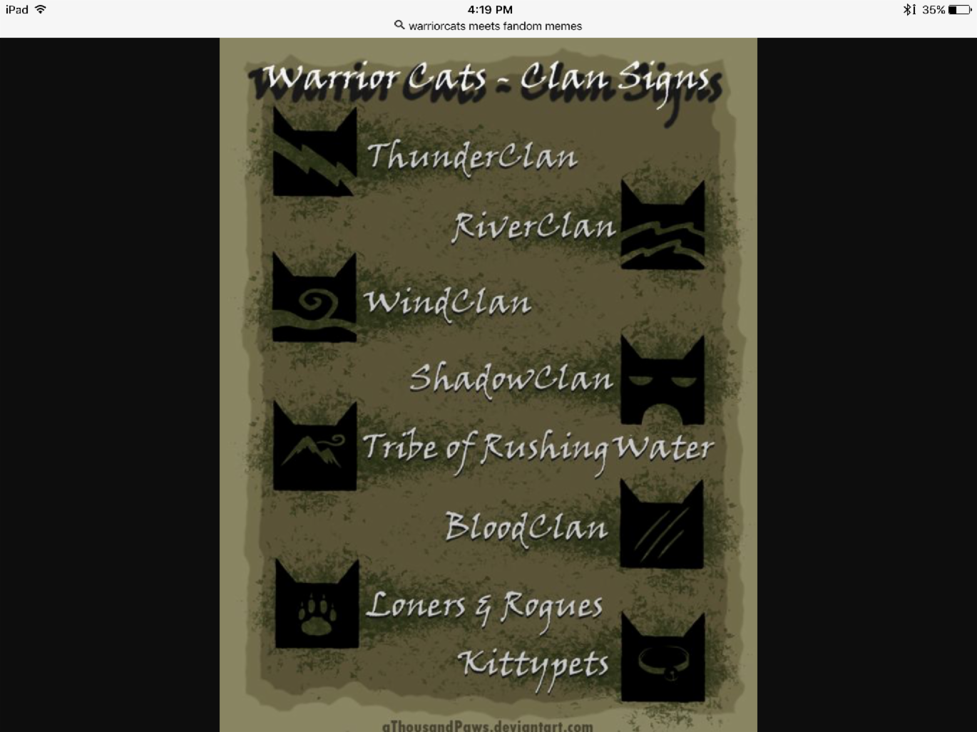 What warriorcats clan are you in?