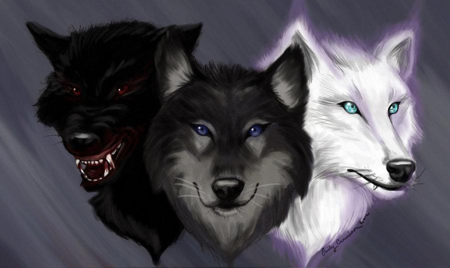 What kind of wolf are you? (3)