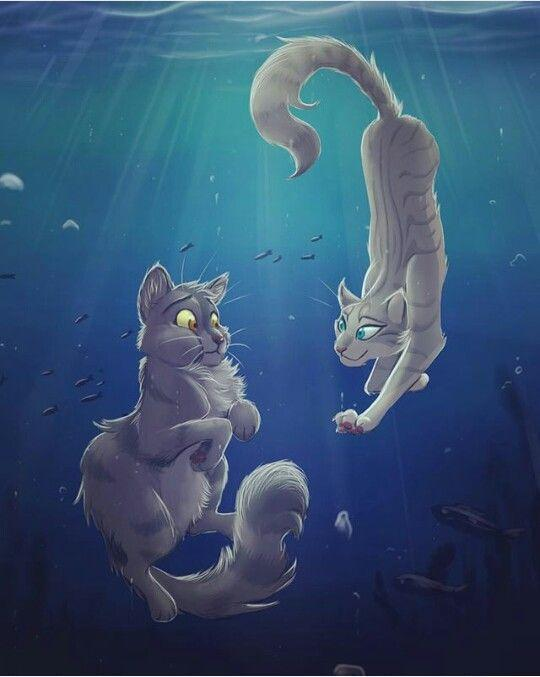How well do you know Warrior cats? :3