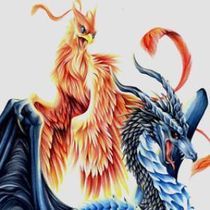 Are you a Dragon or a Phoenix?
