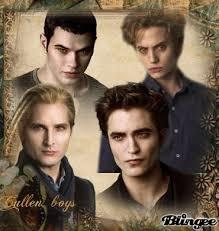 Which Twilight character are you? (Guys only)
