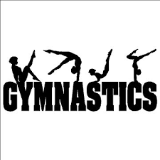 are you a true gymnast
