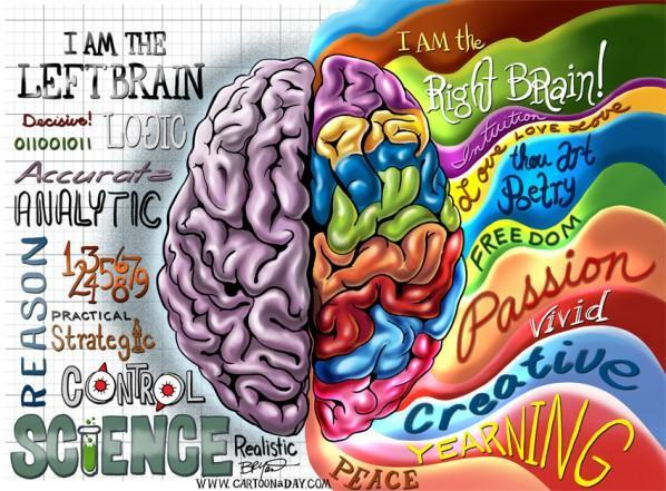 Are you left-brained or right-brained? (1)