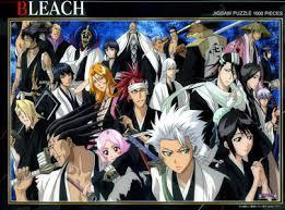 bleach quiz
