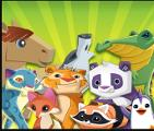 Witch Animal Jam animal are you like the most?