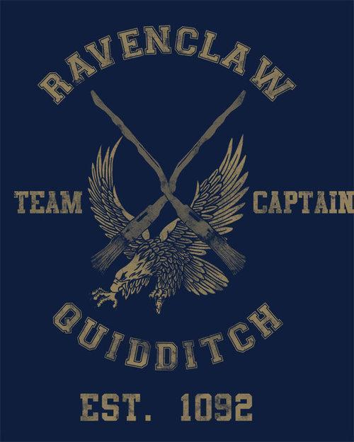 ravenclaw quidditch team - 500×619