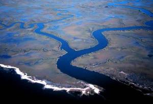 Which feshwater/saltwater ecosystem occurs when a river runs into an ocean?