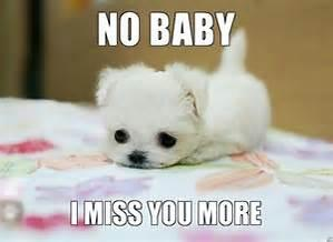 I'm going to miss you more!