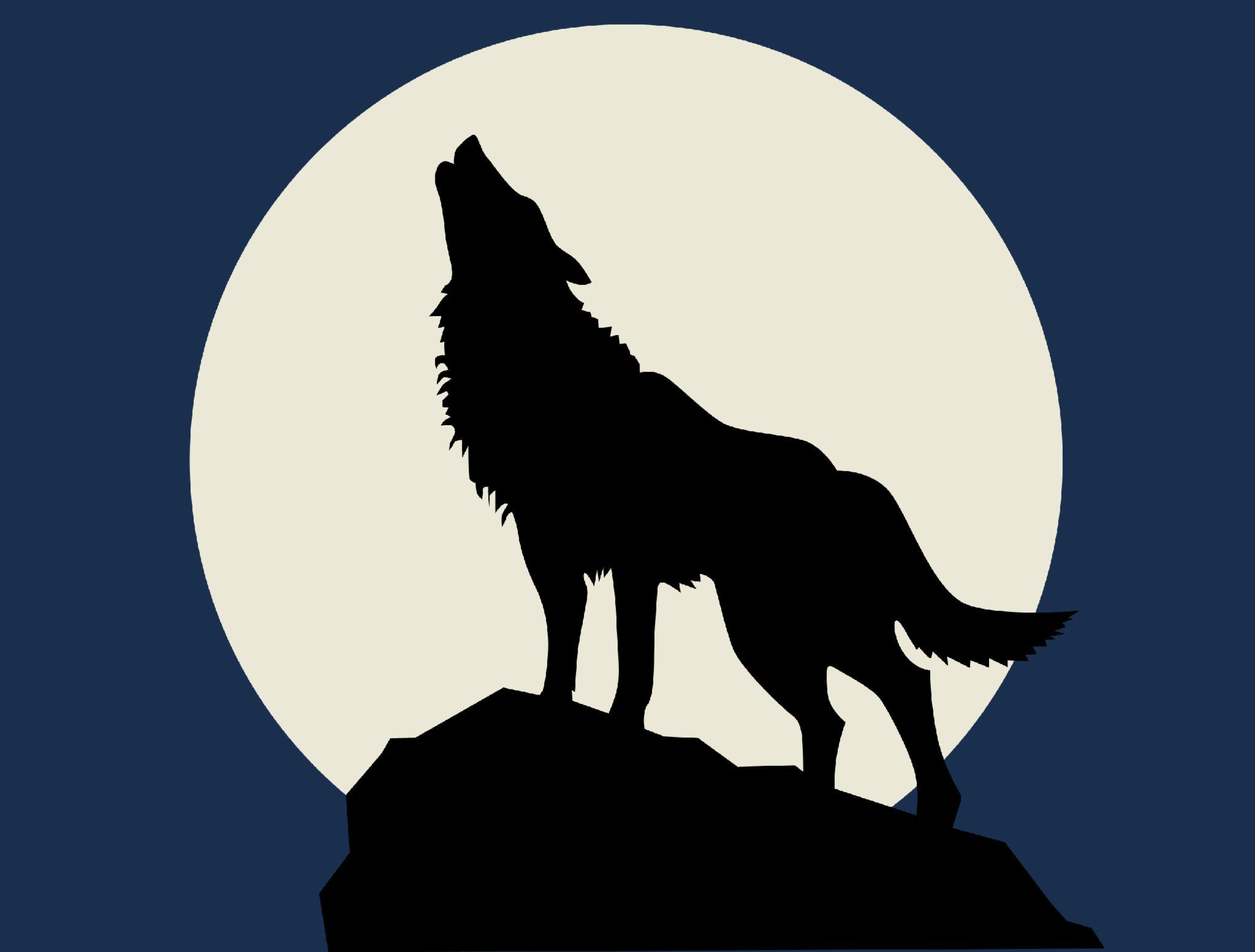 What do wolves do at the moon?