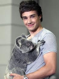 What is the strangest rumour Liam has heard about himself?