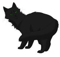 Which ancient cat did Hollyleaf find in the tunnels when they collapsed?
