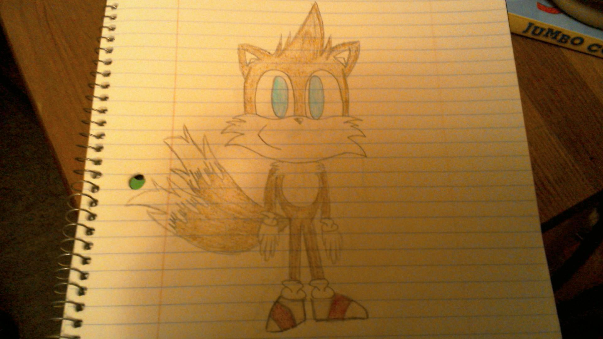 "You try to see over Tails, and when he sees you doing this, he steps to the side. When he does, in his place you see a little 8 year old brown fox with a Mohawk, two frizzed out tails, and shoes like Sonic's except with a red stripe. ""Aww he's adorable! Who is he?"" you ask."