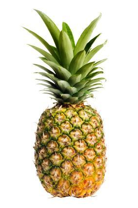 What is a Pineapple?