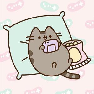 Do you like pusheen?
