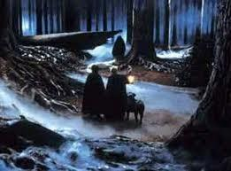 What type of magical creature came to Harry's rescue in the forbidden forest in Harry Potter and the Philosophers Stone?