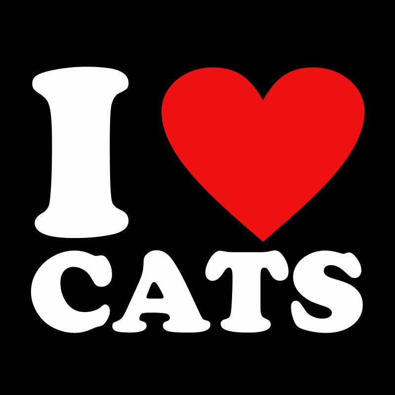 do you like cats