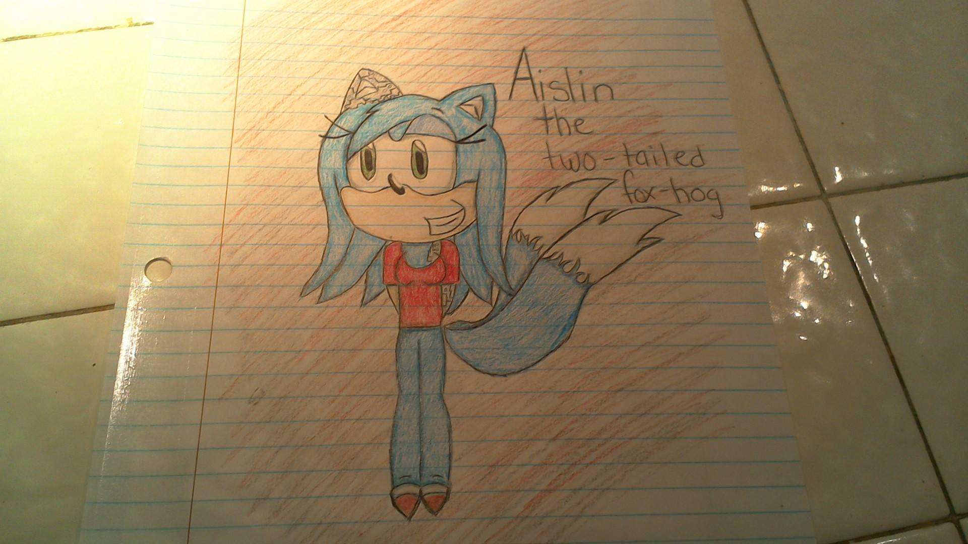 """H-hello?"" you ask. The crying stops. ""W-w-who's there?"" you ask. ""Show yourself!"" you demand, still nervous. The person steps out of the dark, its a blue hedgehog/fox with two white-tipped tails and one mechanical ear and another mechanical arm. She was wearing a red shirt, blue pants, shoes like Tail's except with red on the tip and black biker gloves. You see clearly she's been crying."