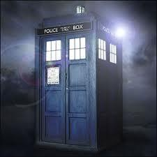 The TARDIS is freaking out. You are the only one there, what do you do?