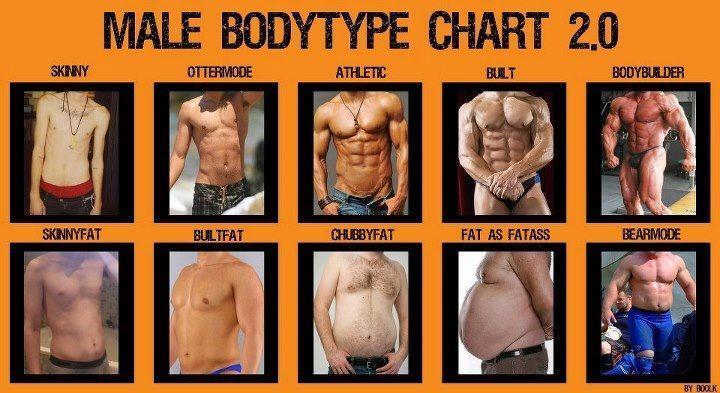 Which Body type do you like better?