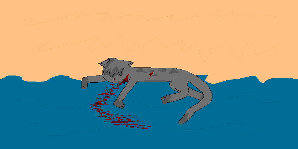 What cat killed was killed Hollyleaf?