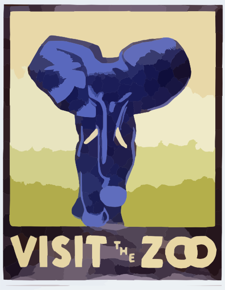 At your local zoo, your favorite animal/section is . . .