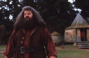 Hagrid's giant half-brother was named: