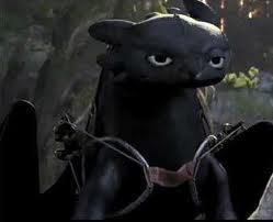 How did Hiccup get Toothless back after his dad caught him?