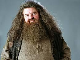 What is Hagrid's first name