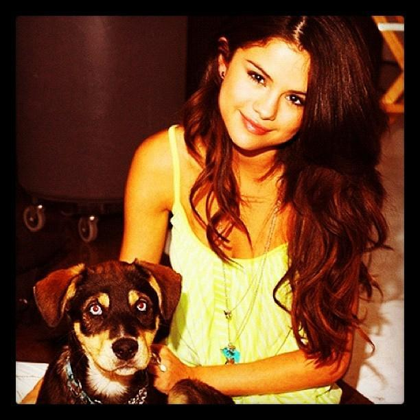 What is Selena Gomez new puppy name?