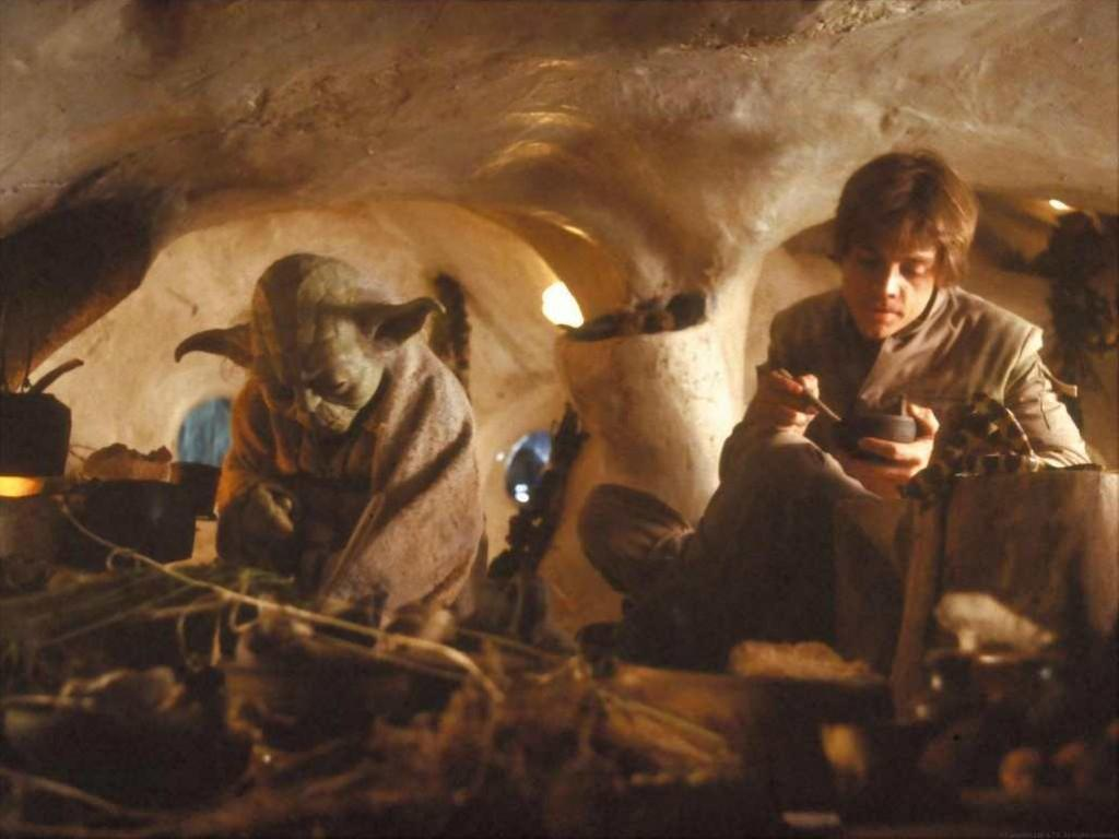 What did Yoda cook for Luke in the Empire Strikes Back?