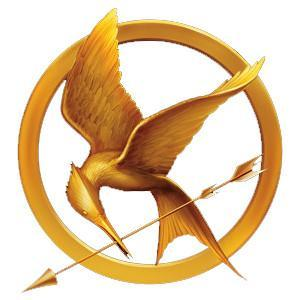 Did you like the questions that I asked about the hunger games?