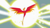 If you look at this picture below you might notice that this phoenix might seem familiar to you. Do you know who she is?
